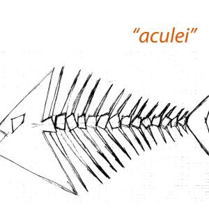 aculei1 etn_art 5