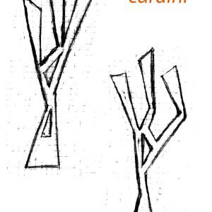 cardini etn_art 5